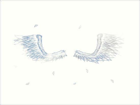 bird wings by torideb