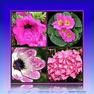 Pinkies Collage -  Pink Summer Flowers von BlueMoonRose