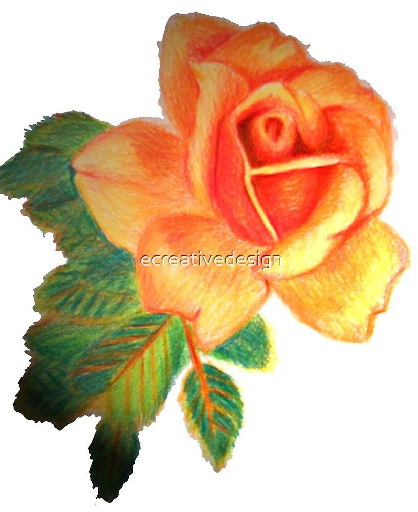 Orange Rose by ecreativedesign