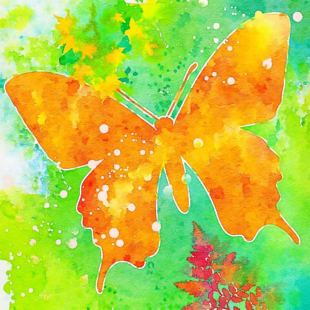 Butterfly #4 by Anthony Ross