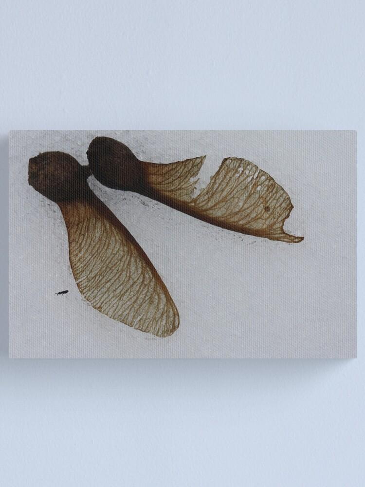 Alternate view of fallen pair Canvas Print