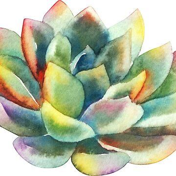 Acuarela, suculenta, pintada a mano, cactus. de SouthPrints