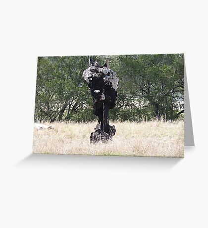 The Black Stump ...come to life.. Greeting Card