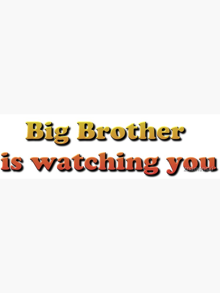Big Brother Is Watching You by znamenski