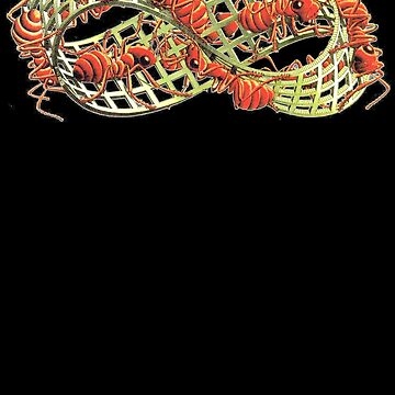Ants on the Mobius Strip (MC Escher) by Golemware
