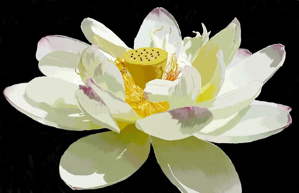Lotus by AnnaLing