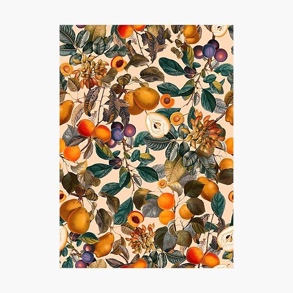 Weinlese-Frucht-Muster IX Fotodruck