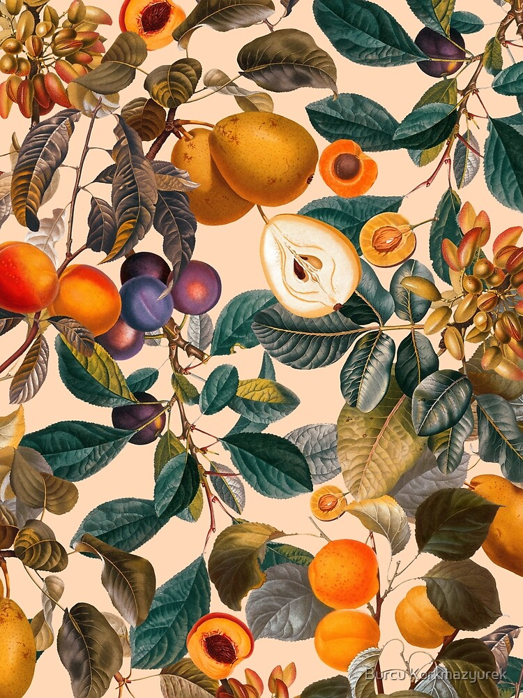 Vintage Fruit Pattern IX by burcukyurek