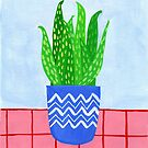 Potted plant II by idriera