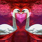 Swan Love by Crystal Wightman
