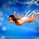 :::Flight::: by netmonk