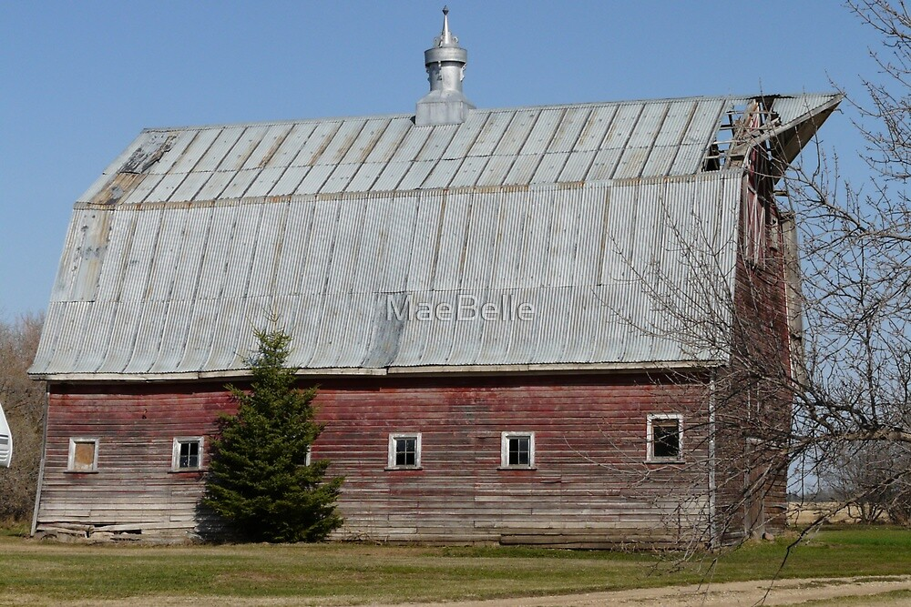 Unique Old Barn by MaeBelle