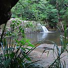 Waitui Falls - The Garden of Eden! by Graham E Mewburn