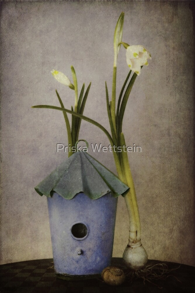 March by Priska Wettstein