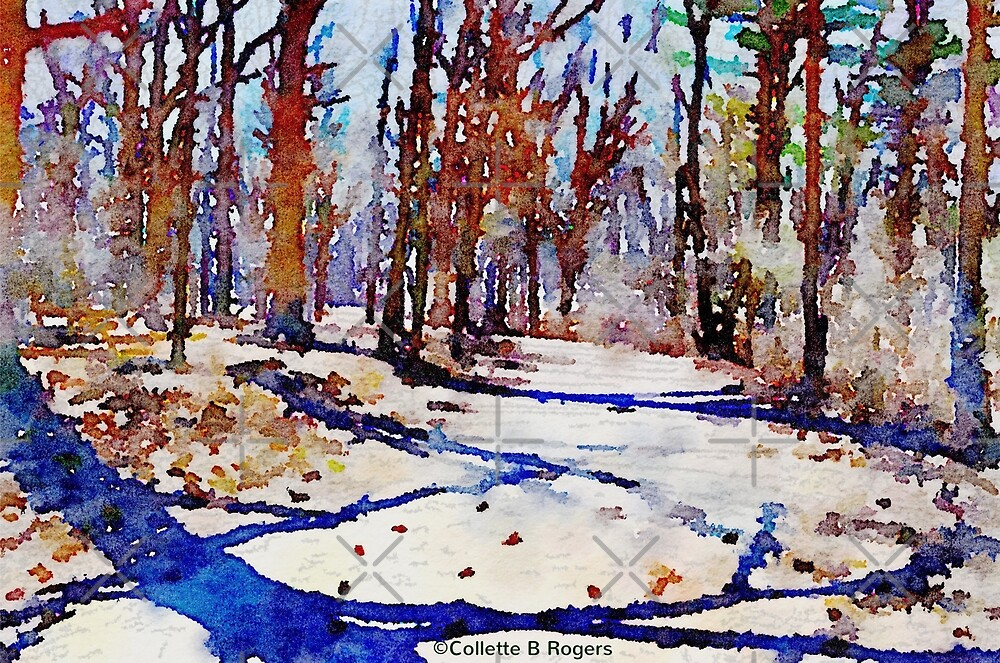 Walking Path by Collette B. Rogers