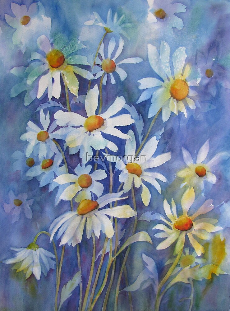The joy of Daisies by bevmorgan
