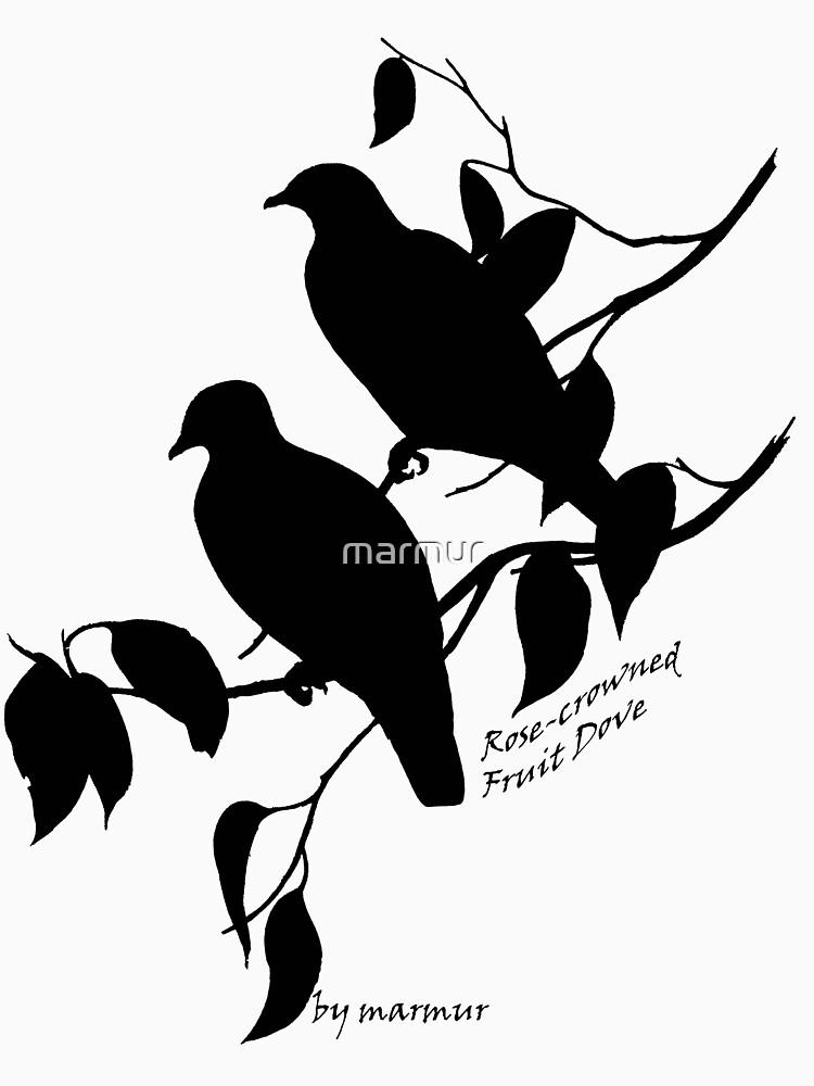 Black Rose-crowned fruit dove by marmur