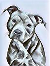 Pit Bull lover, cute illustration of a pit bull puppy- Adopt don't Shop by Angie Stimson