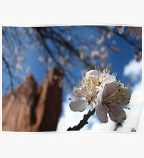 Tower of Babel -- Garden of the Gods Poster