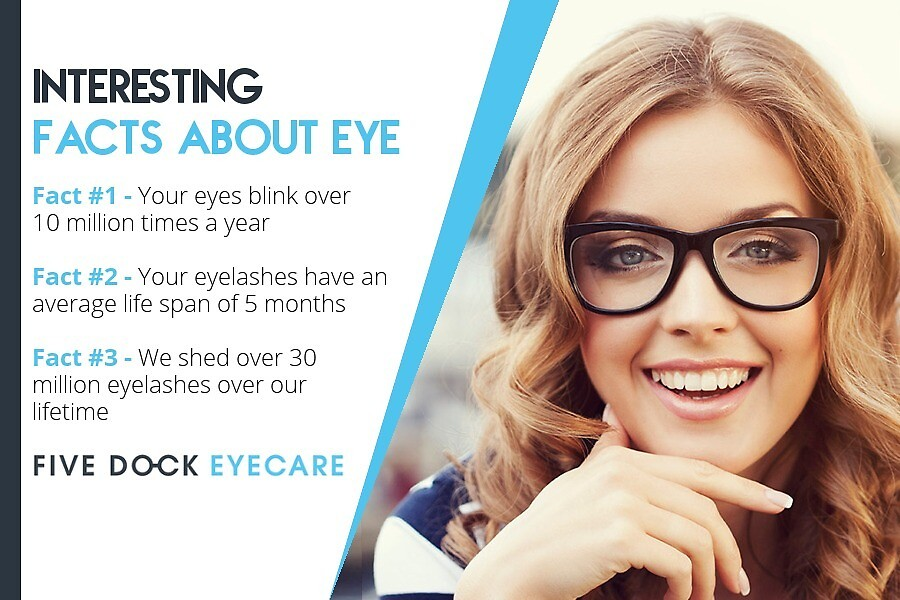 Interesting Facts about EYE by fivedockeyecare