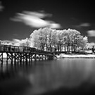 Bridge by Tyler Thomas