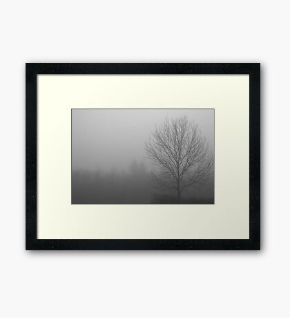 Out Of the Fog Framed Print