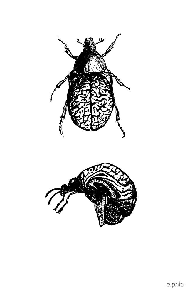 Brain Bugs by elphia