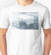 Arctic Shore Unisex T-Shirt