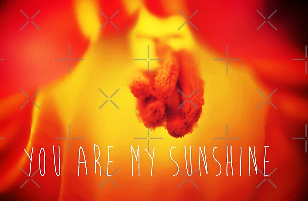 You Are My Sunshine by Denise Abé