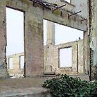 Alcatraz - Verwirrung des verlassenen Offiziers 1 von Margaret Stevens
