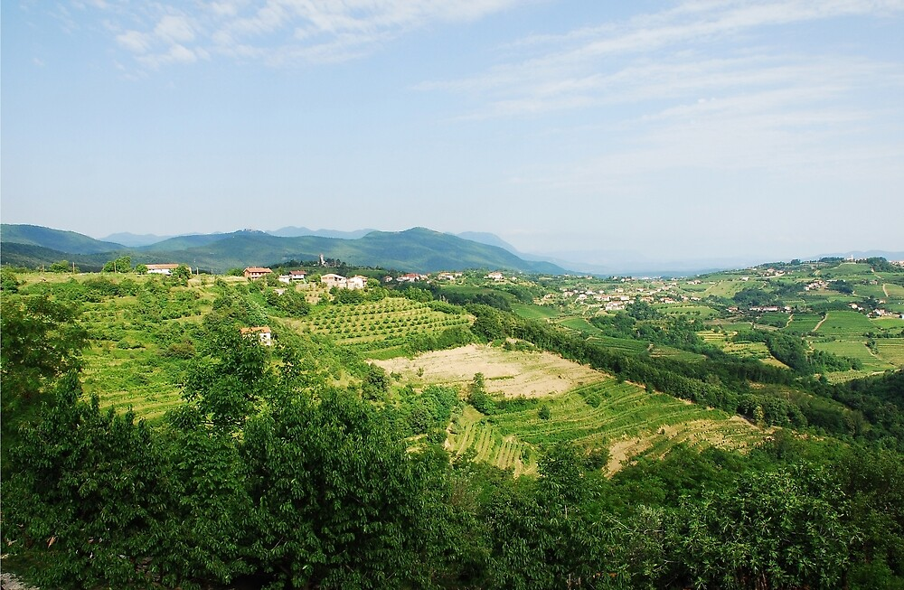 Landscape Near Smartno  by jojobob