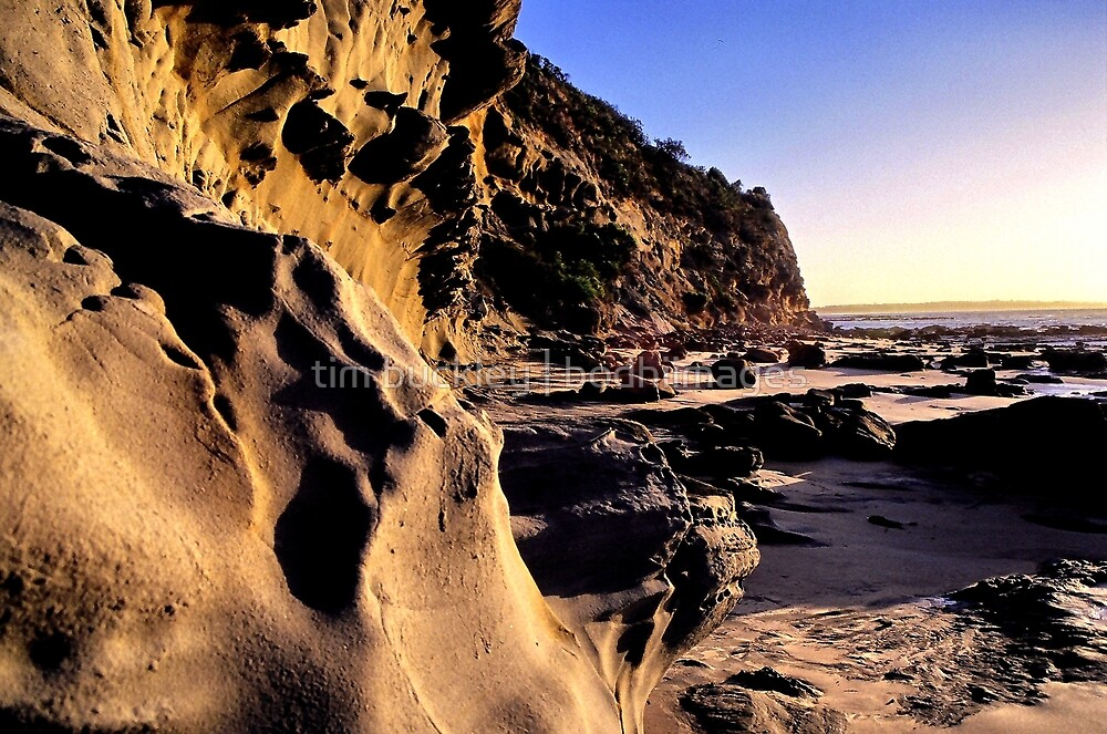 the caves. inverloch, victoria by tim buckley | bodhiimages