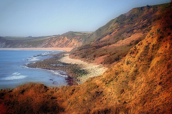 Westward Ho-Jurassic Coast by naturelover