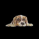 A heartwarming watercolour illustration of a cocker spaniel puppy.  by CindyDs