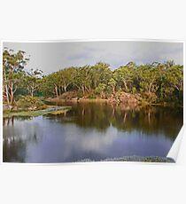 Parramatta Lakes Poster