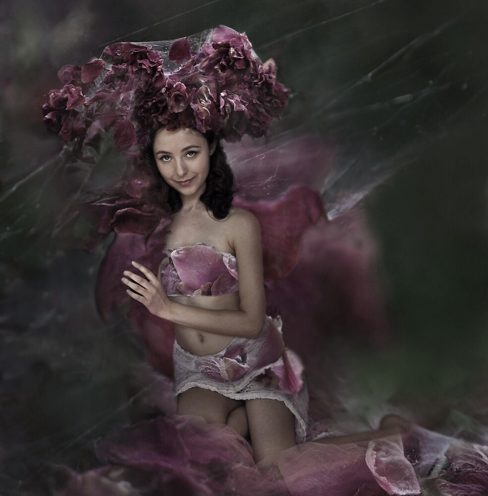 queen rose web by hopeweaver