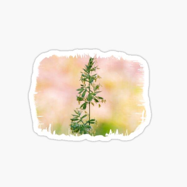 Natur Sticker
