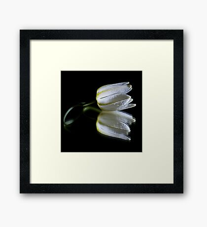 Peaceful Beauty 1 Framed Print