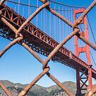 Rusty Gate by John Violet