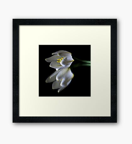 Peaceful Beauty 3 Framed Print
