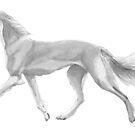 Saluki - running by doggyshop