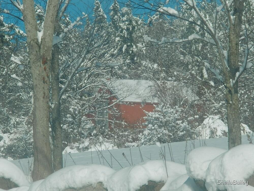 Snowy Barn by SheilaBailey