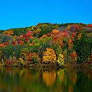 Autumn Reflection by Crystal Wightman