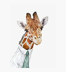 Giraffe Fotodruck