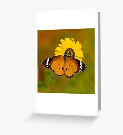 The Butterfly and Yellow Flower-Sequel#2 Greeting Card