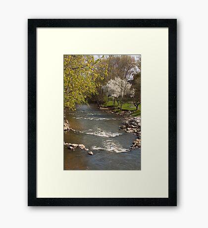Mill Cteek in Spring - Dexter, Michigan Framed Print