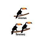 toucans by insertwittyname