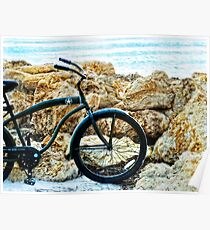 Beach Cruiser - Bicycle Art By Sharon Cummings Poster