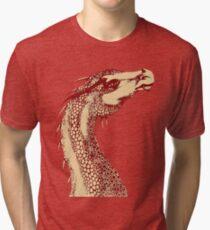 Petoskey Dragon Tri-blend T-Shirt