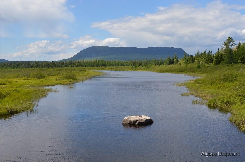 Mountain Overlooking The River by Alyssa Urquhart